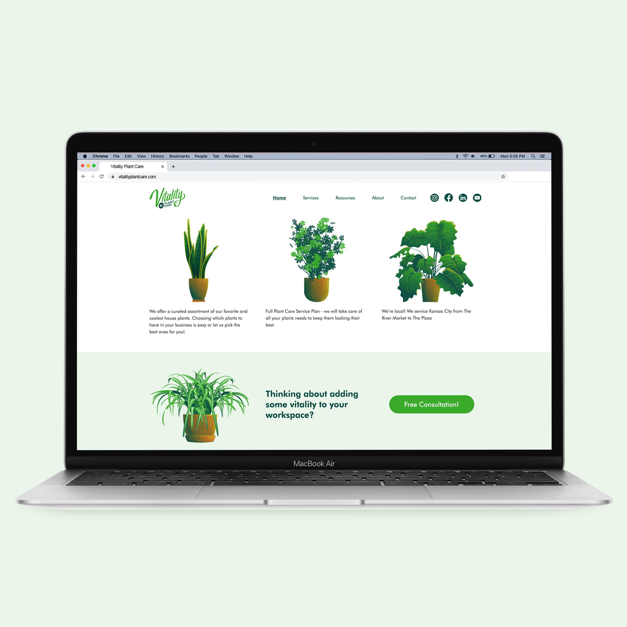Vitality Web Illustrations