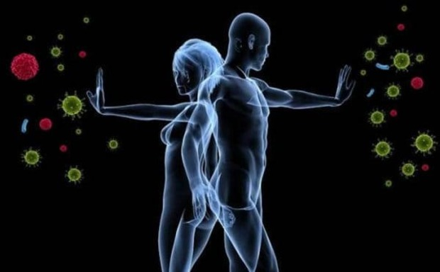 Tăng cường hệ miễn dịch nhờ sử dụng ghế massage