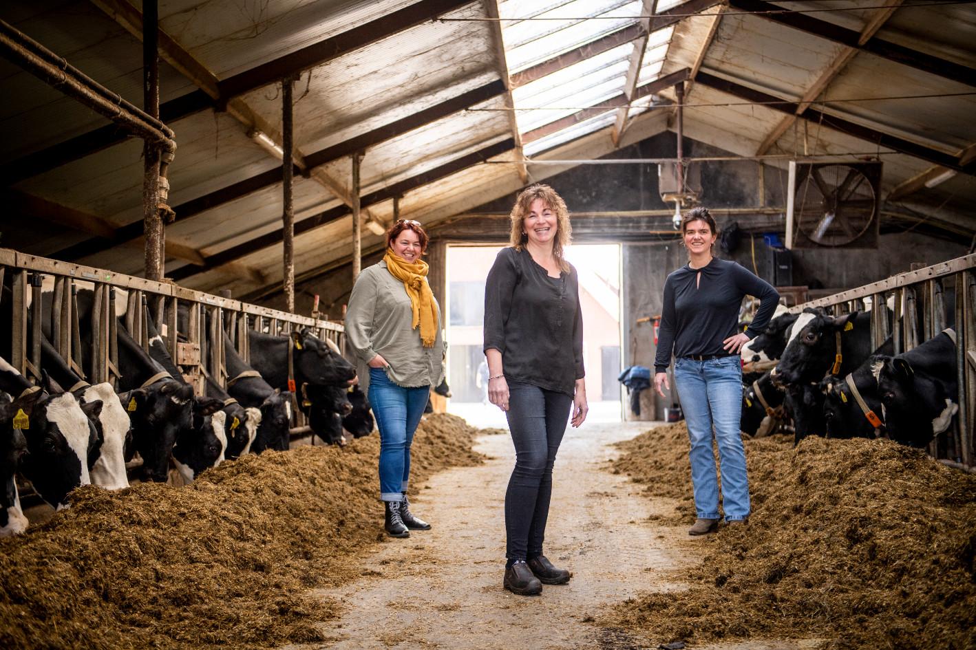 Esther Loohuis, Laura Schrijver en Stephanie van den Berg in de koeienstal