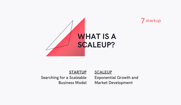 What is a Scaleup?