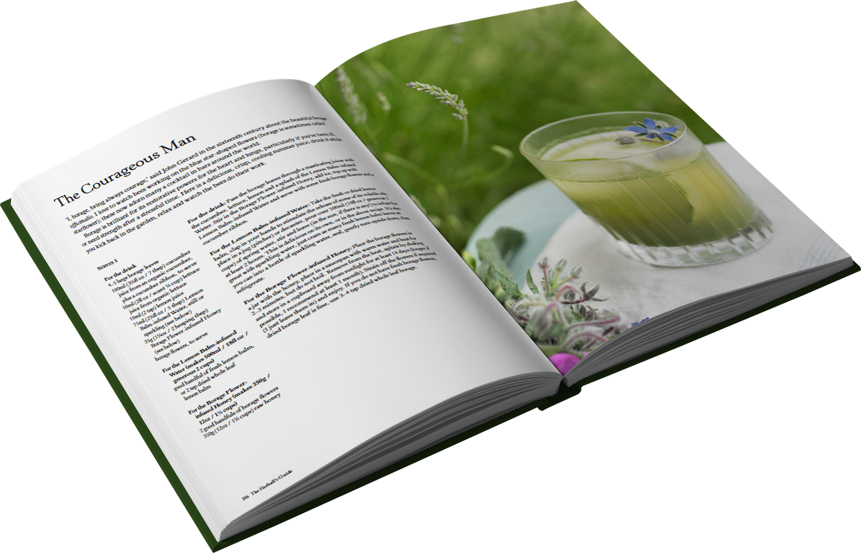 An image of botanical drinks book