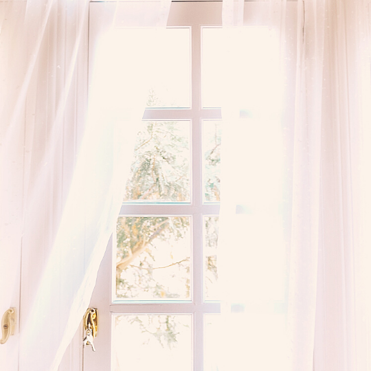 Window with airy curtains