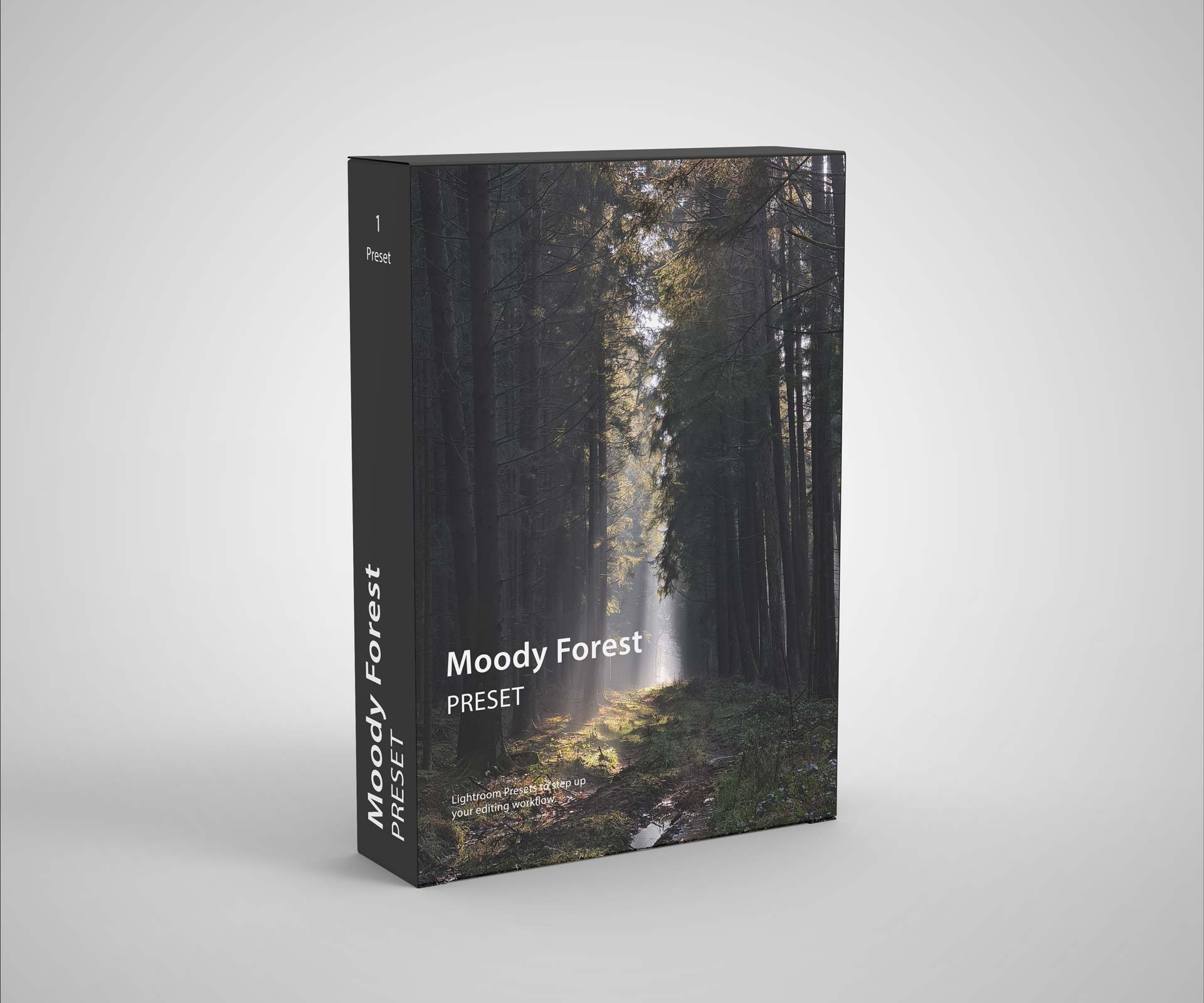 Packshot for Preset Moody Forest.
