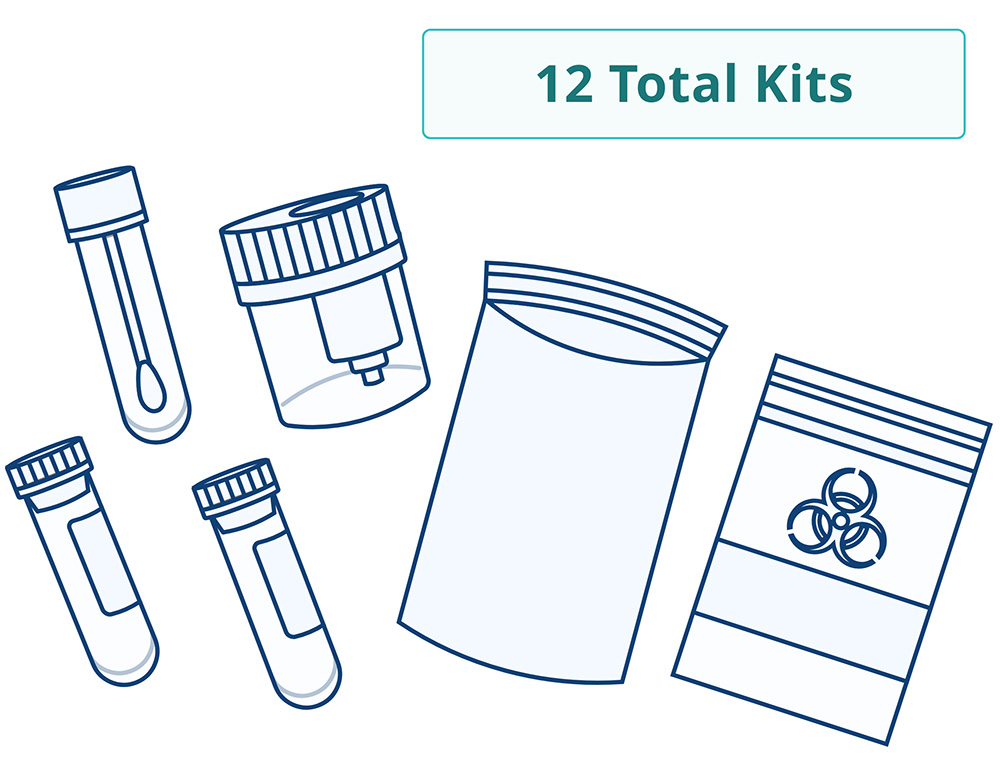 Recovery pack that pictures a collection cup, 2 vacutainer tubes, 1 buccal swab, a biohazard bag, and an overnight return envelope. The recovery pack has 12 total kits.