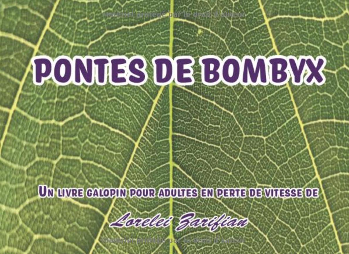 PONTES DE BOMBYX