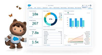 CRM Software & Cloud Computing Solutions - Salesforce EMEA
