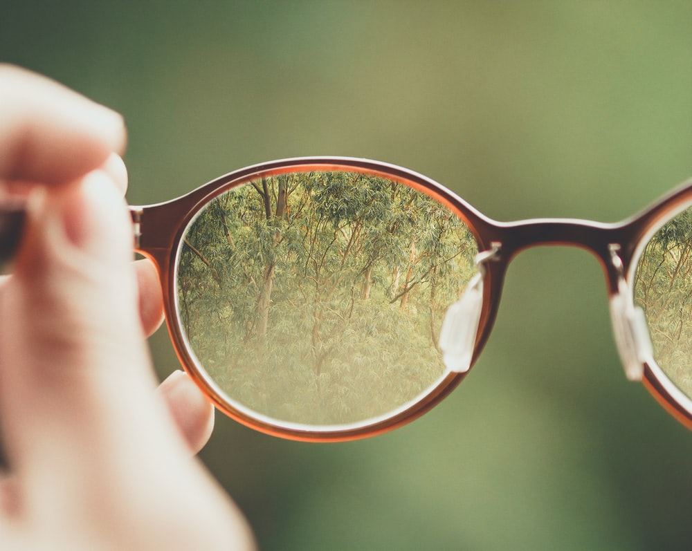 person holding brown eyeglasses with green trees background
