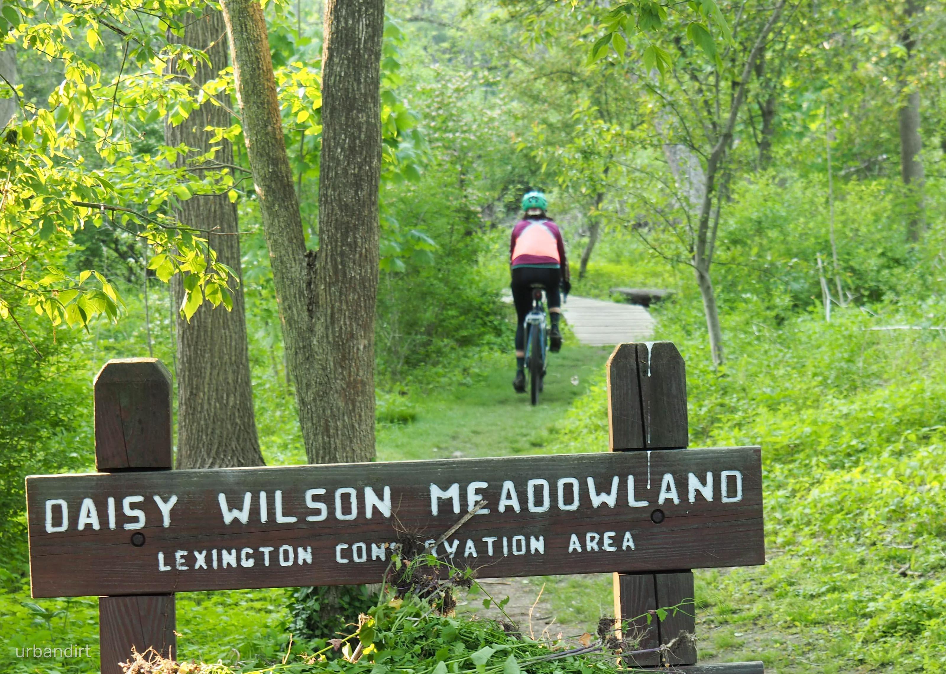 multi-meadow