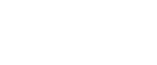 What a RAD logo this is for Bear Branding co