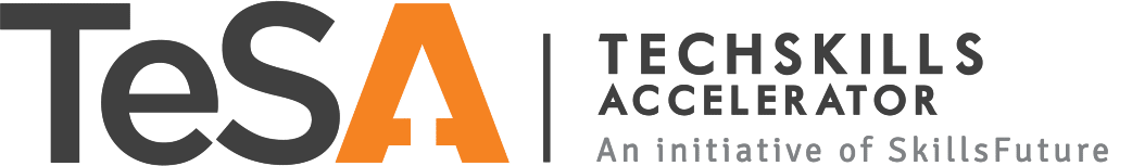 TeSA supports a lot of academies in Singapore like Smartacademy who offer UX courses