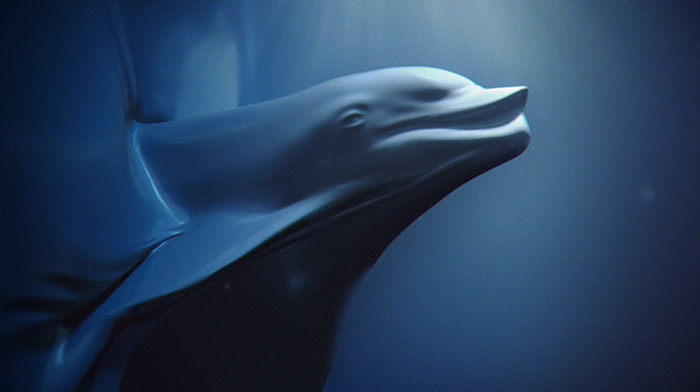Sea Sheperd commercial still of dolphin shape