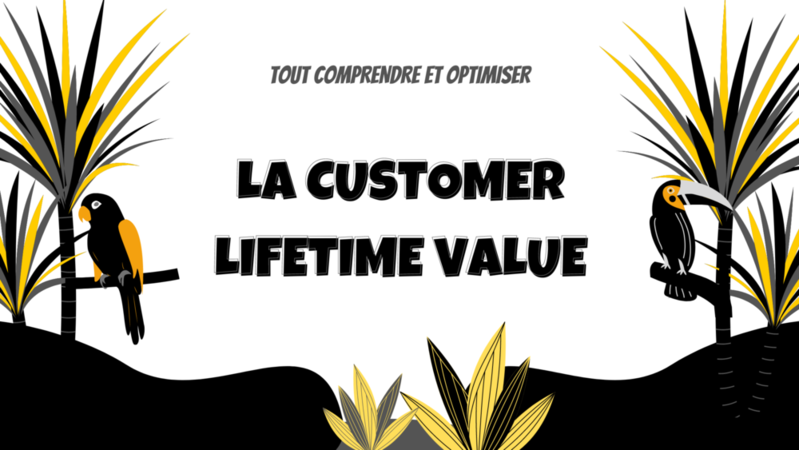 Tout comprendre de la Customer Lifetime Value (CLV) et comment l'Optimiser