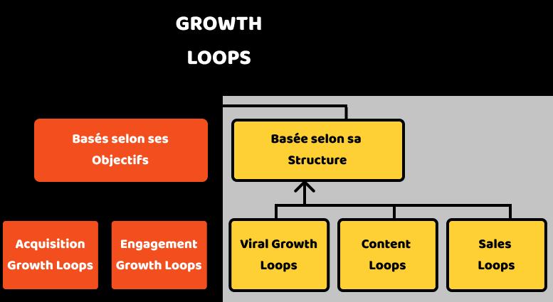 Growth Loops basés sur la structure