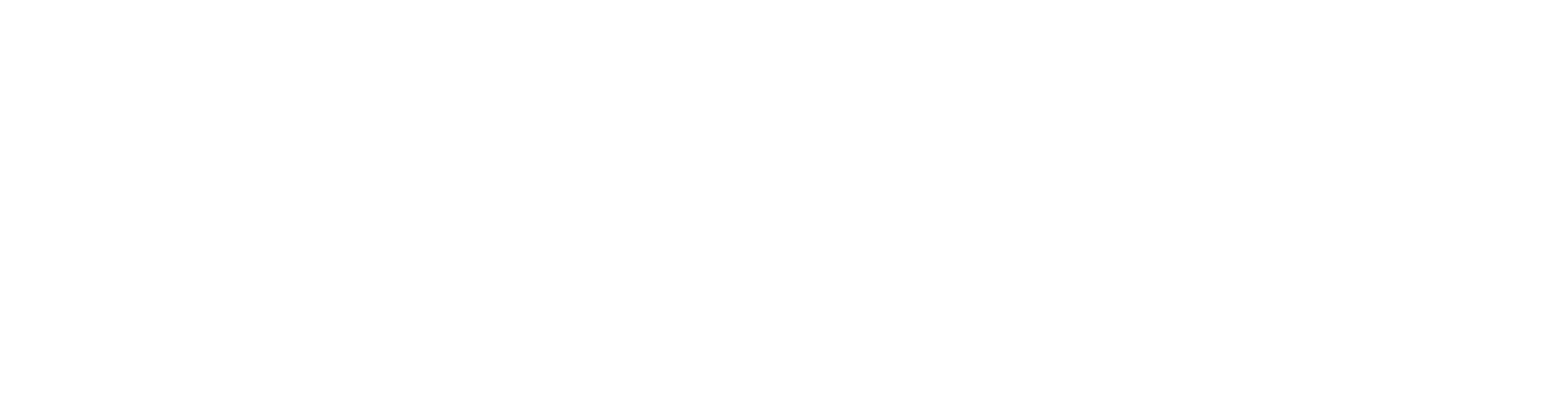 Blue Sky Analytics Logo in white