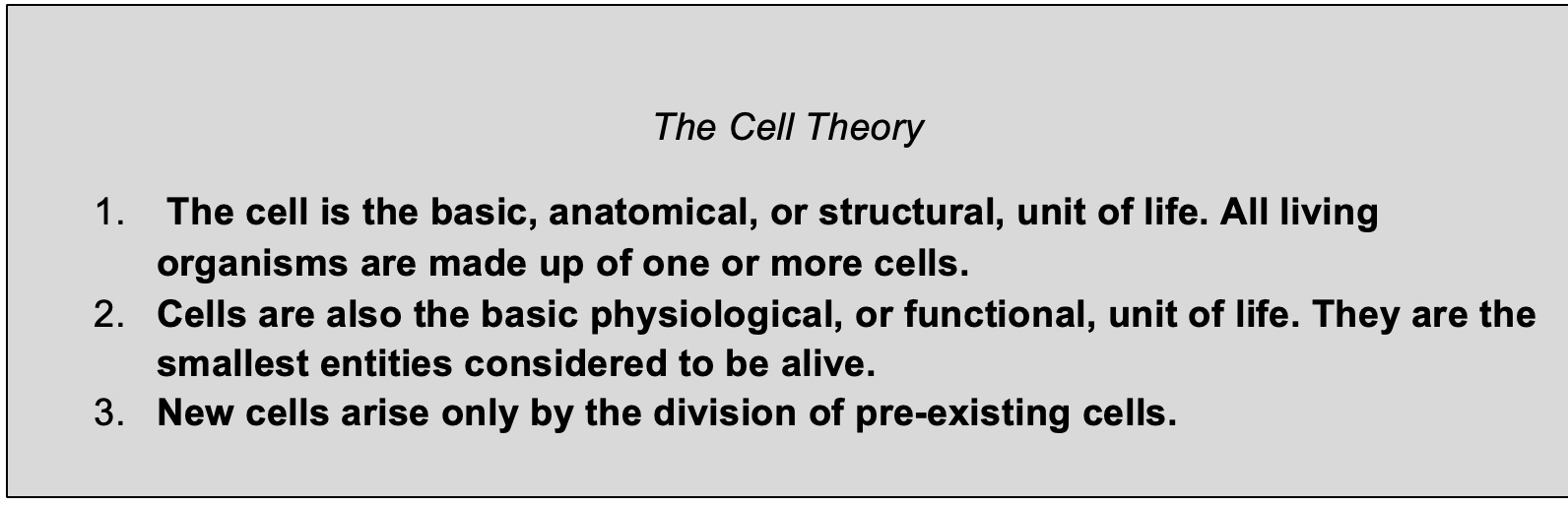 The cell theory 1. The cell is the basic, anatomical, or structural, unit of life. All living organisms are made up of one or more cells. 2. Cells are also the basic physiological, or functional unit of life. They are the smallest entities considered to be alive. 3. New cells arise only by division of pre-existing cells.
