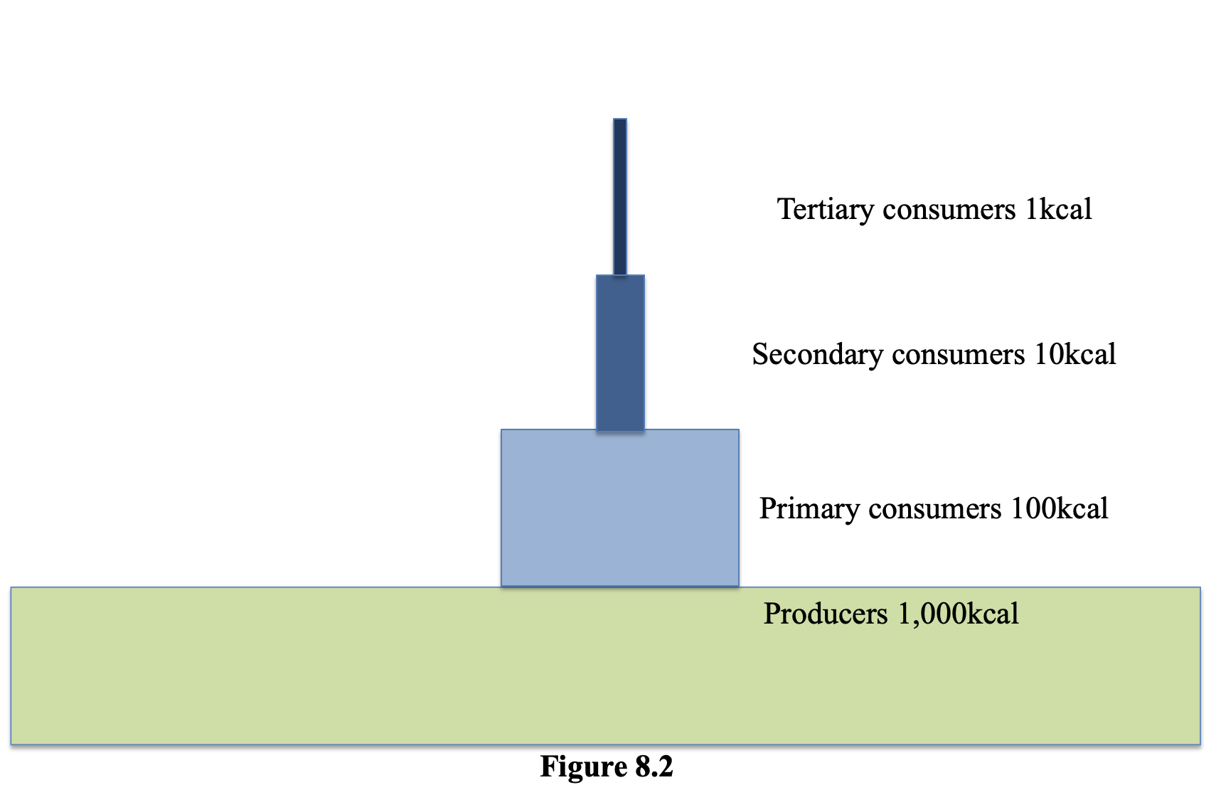 Figure 8.2 shows an example of the energy in each tropic level. The large base shows the producers have 1,000 kcal of energy. Above them, the primary consumers and 100 kcal of energy. Above them the secondary consumers have 10 kcal of energy and at the top the tertiary consumers have 1 kcal of energy.