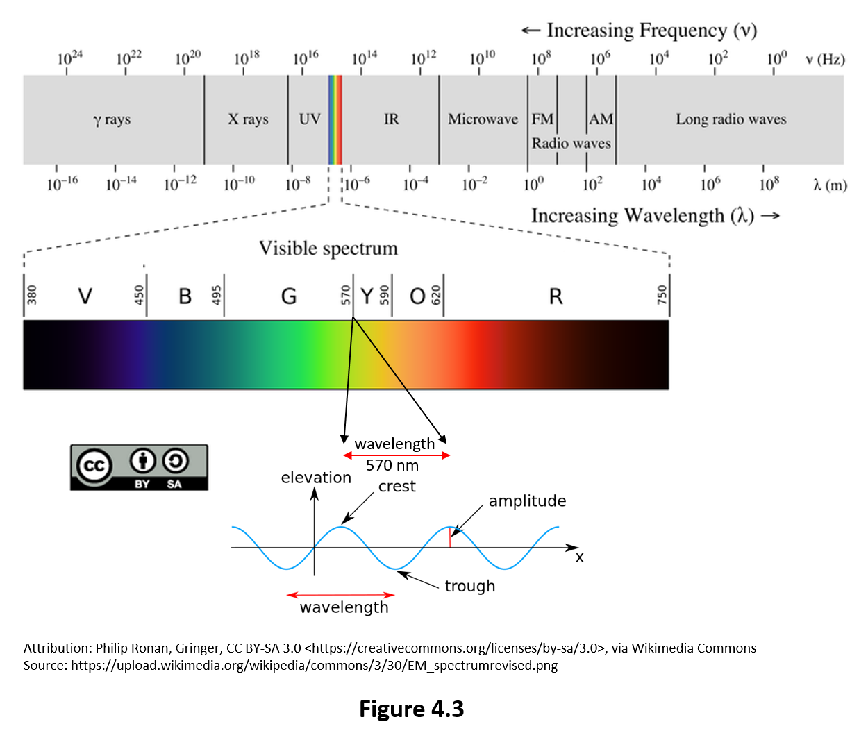 Figure 4.3 shows the electromagnetic spectrum. Visible light is a small fraction of this spectrum. Wavelengths in the visible spectrum range from 380nm to 750nm.