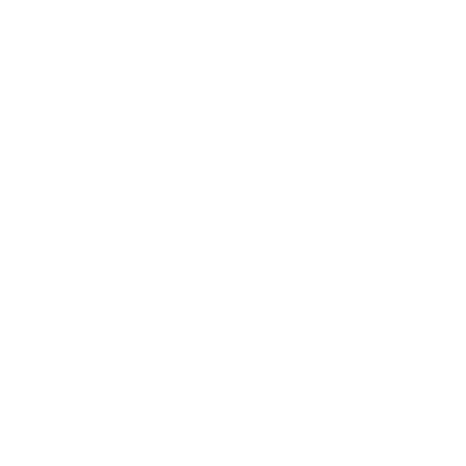 instant mobile roadworthy - tyre and wheel services icon