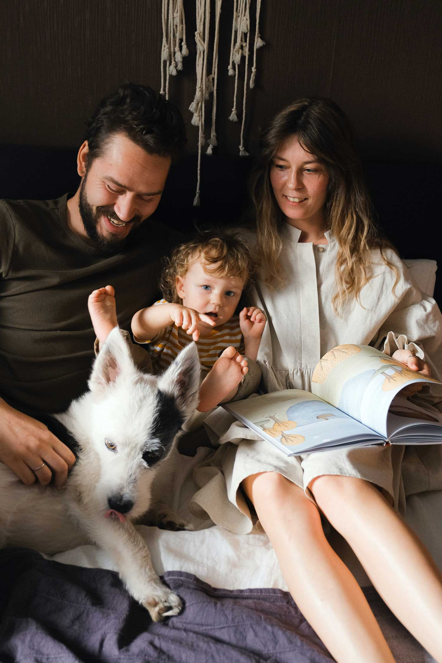 An image of a family with a PSD dog