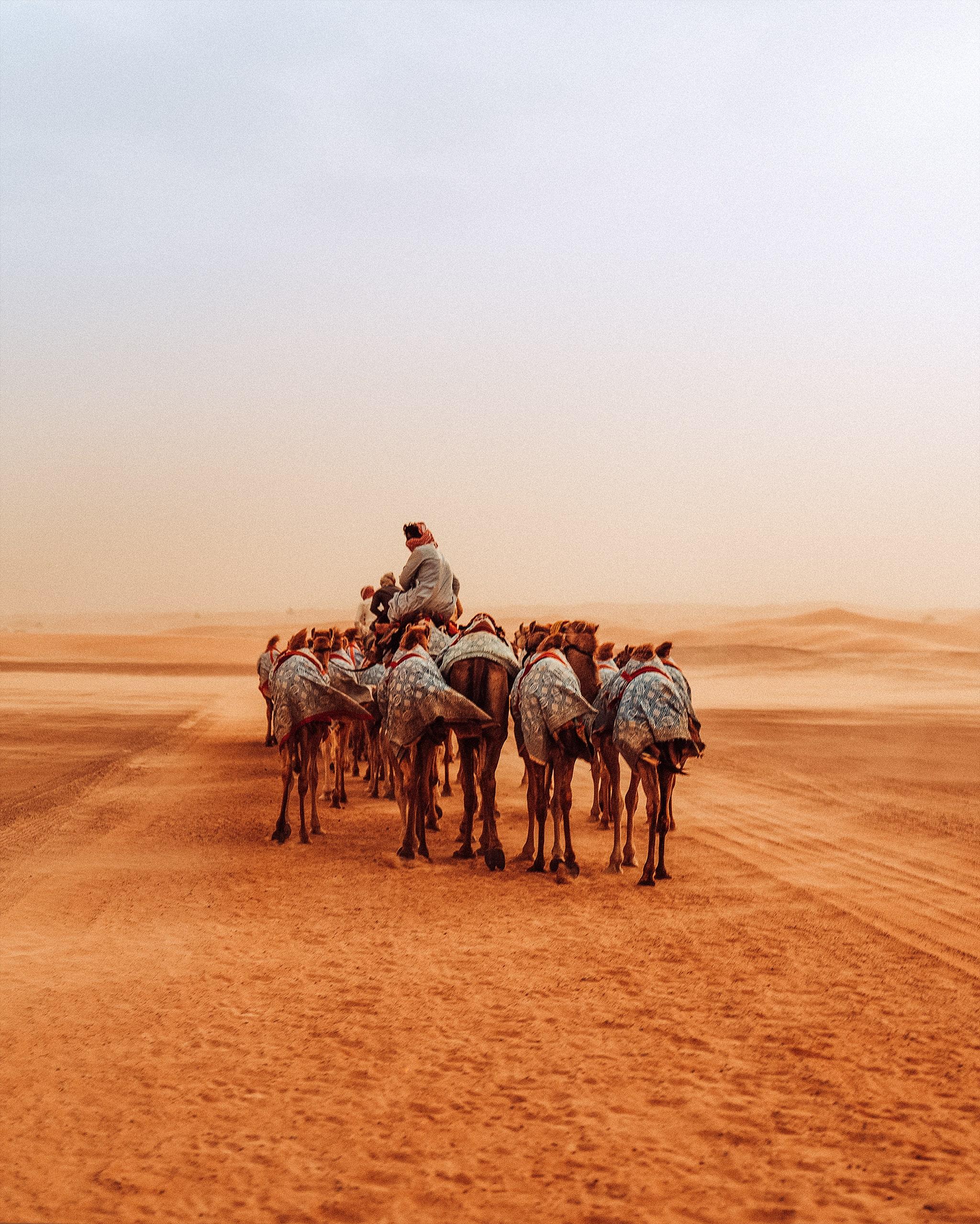 Reise & Tourismus