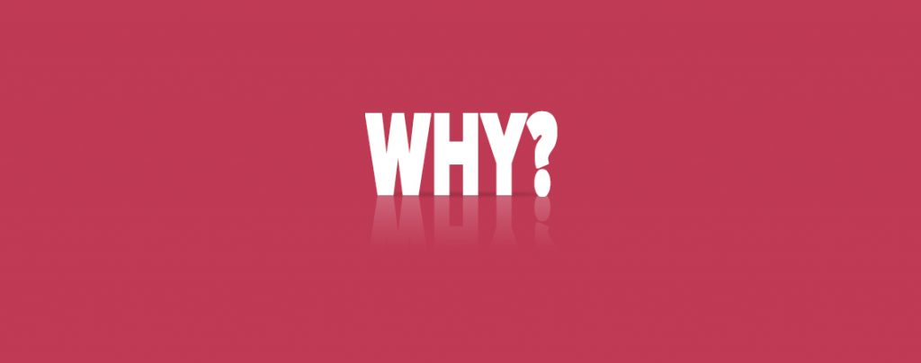 the brand purpose gives you the answer for the why