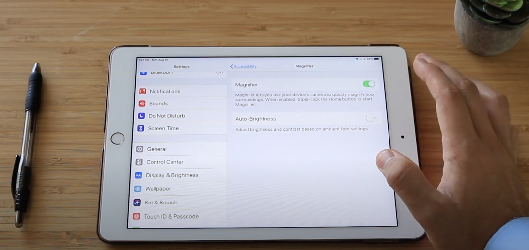 iPad magnification accessibility feature