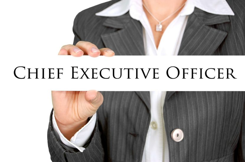 Executive CEO Consultancy Firm in UAE
