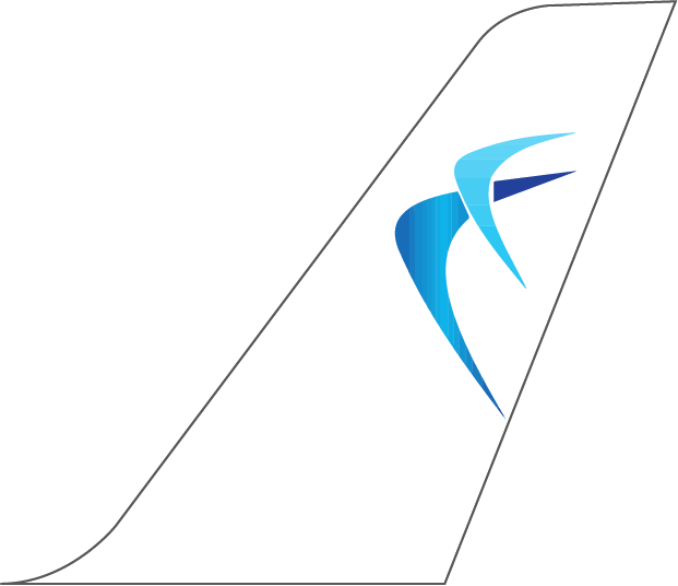 Blue Air Plane Tail