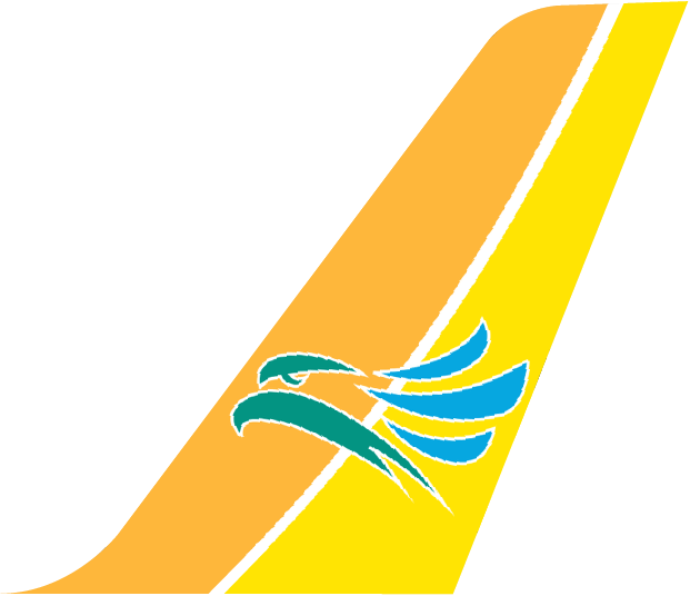 Cebu Pacific Air Plane Tail