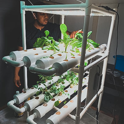 Embrace student Alexi Flanders's greenery