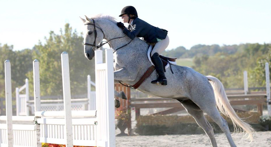 Jumping fence with beautiful grey horse.