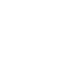 Facebook Icon (white) link