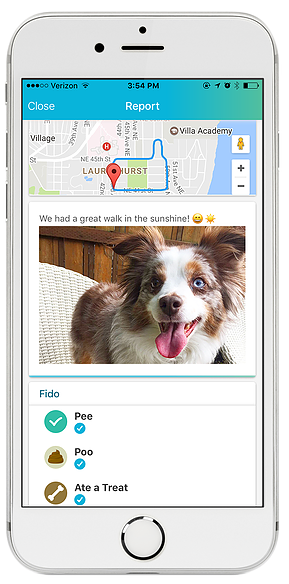 iphone screenshot of dog walk report card with map, smiling dog and bathroom report