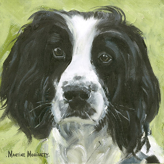 An oil painting of a black and white spaniel