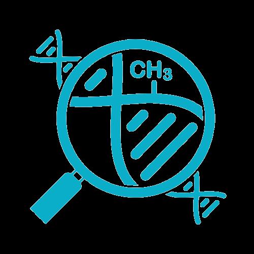 Epigenome icon