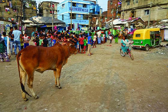 Mobile School in India