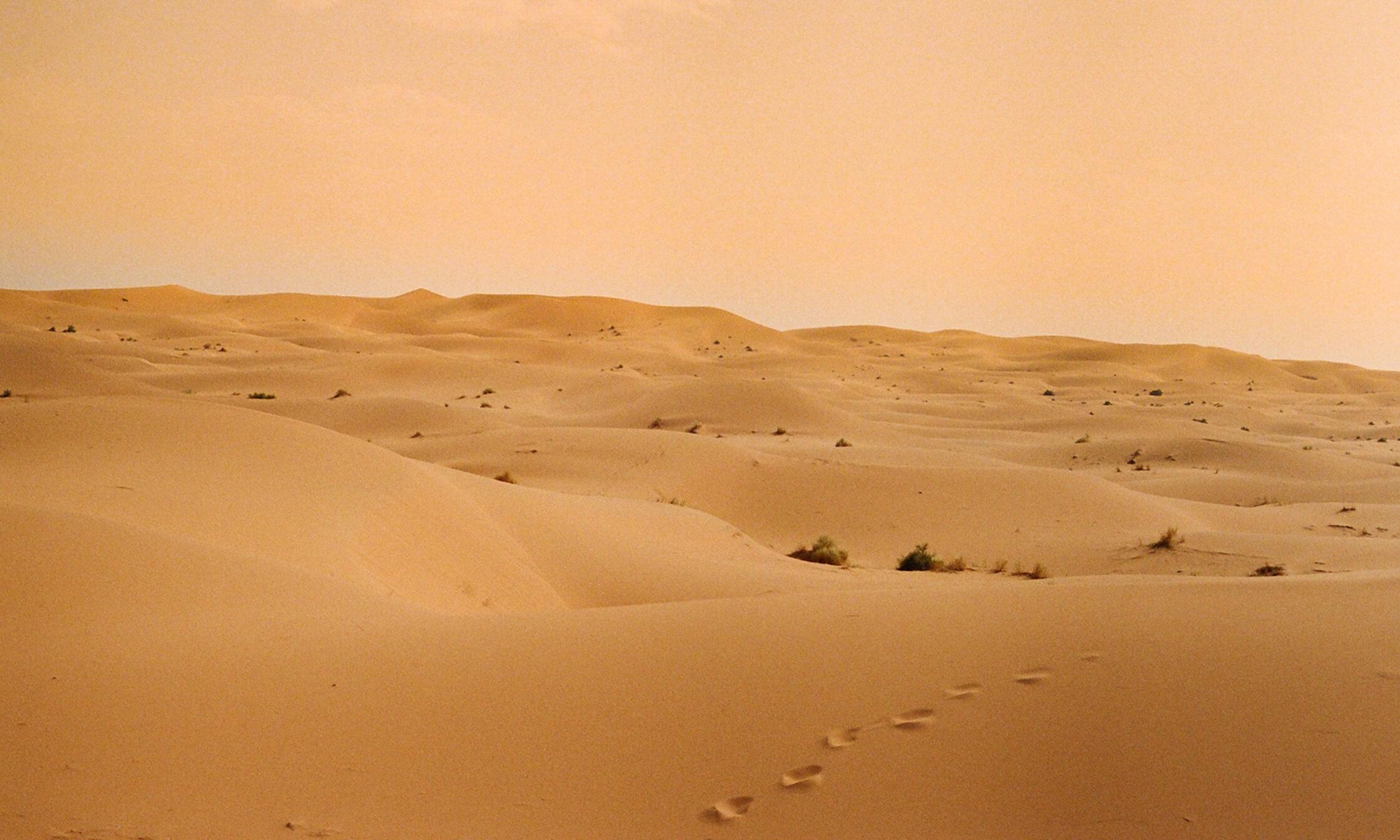 Beyond the Treeless Sand-Brown Hills