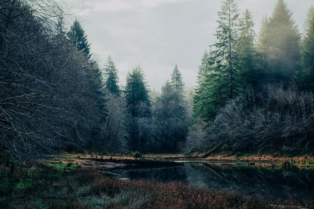 Lacul by Mihai Eminescu