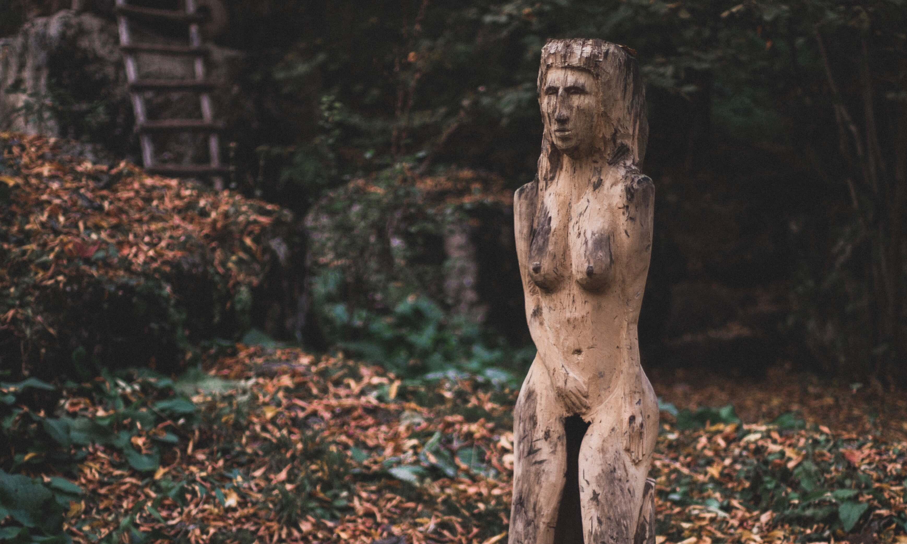 Woman Made of Wood