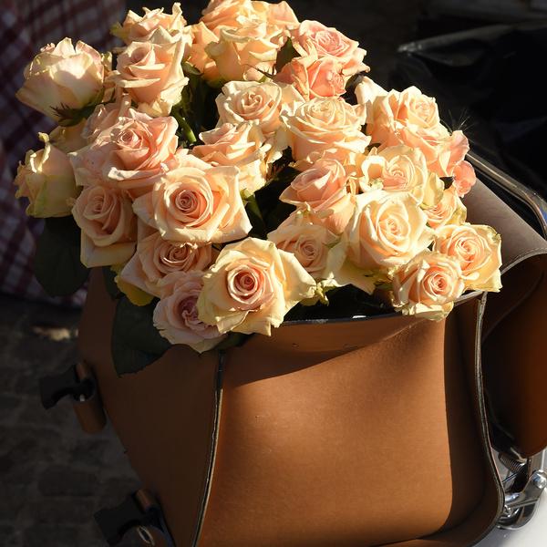 foto dettaglio fiori