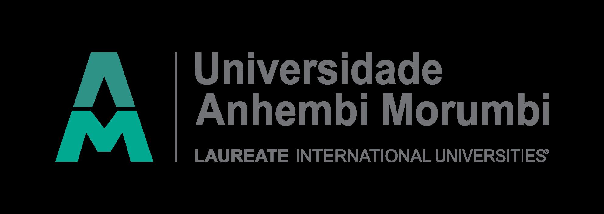 Marcos Hiller Formação de Estrategistas de Marca Logotipo Anhembi Morumbi