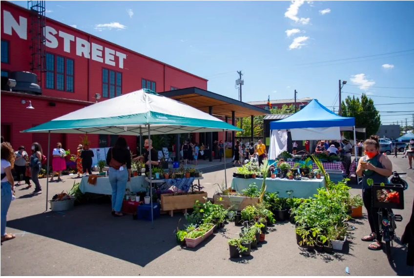 A farmers market hosted in a vacant and reinvented parking lot