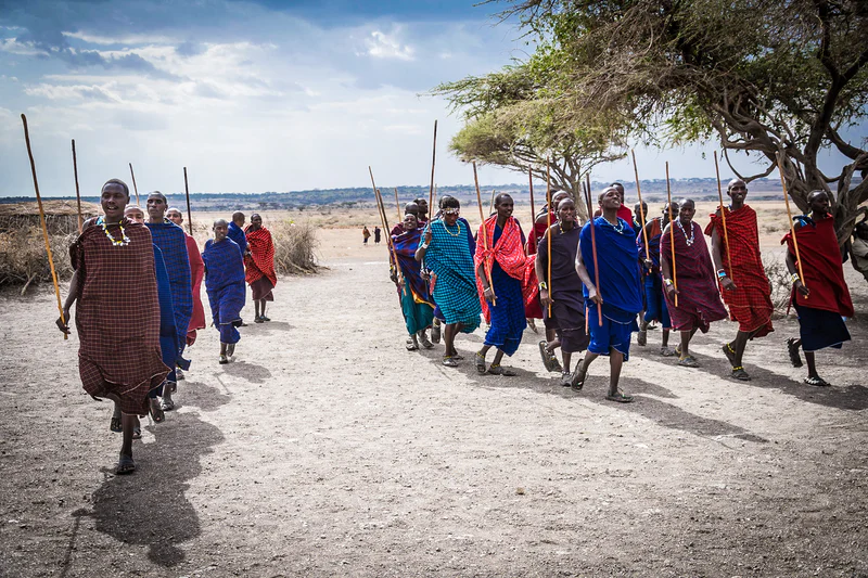 Homosapien tribe