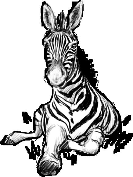 Зебра, талисман  модуля «Сольфеджио  в деле. Как подобрать аккомпанемент» дизайн-задачника «Собаки Павловой»