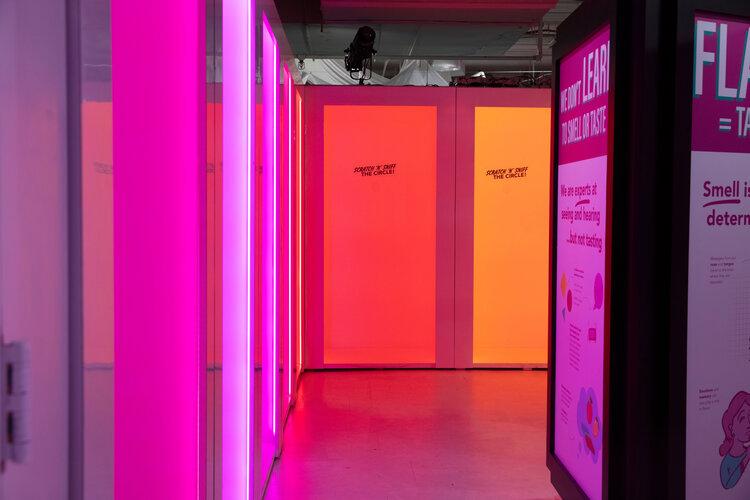 rose mansion-pop-up-design-multi color light rooms-1