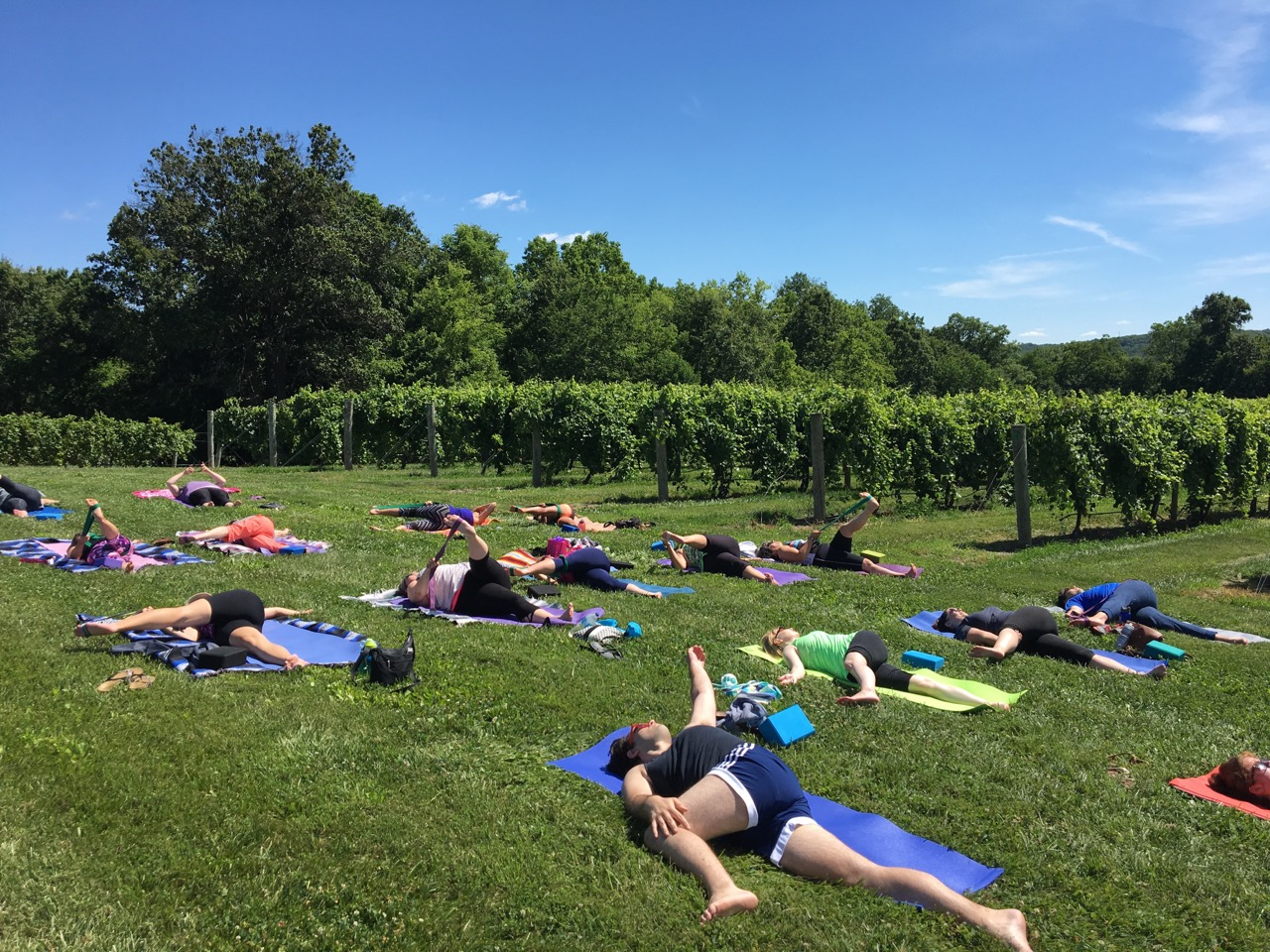 Barefoot in the Vineyards - July 24th