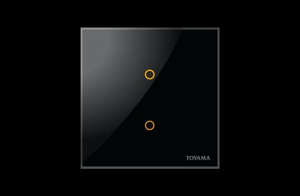 British Standard 2 key Lighting Control Switch by Toyama