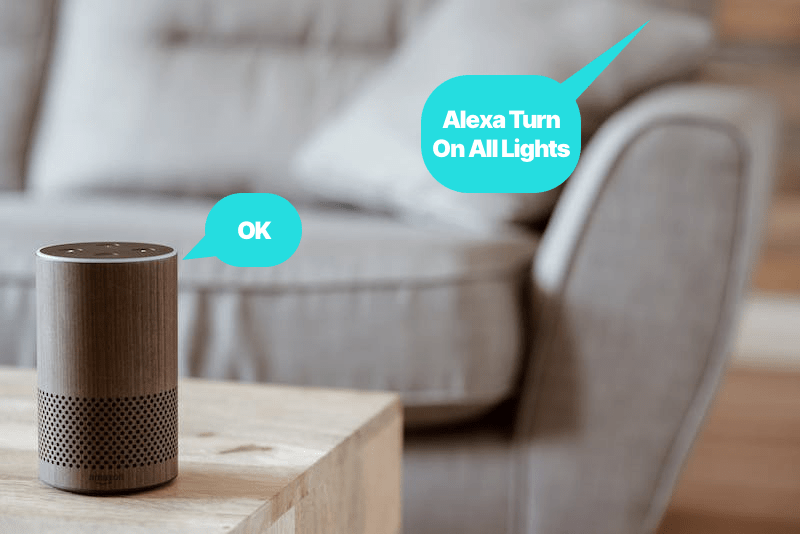 Voice commands to Alexa