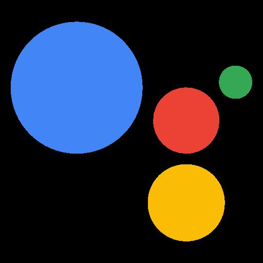 Google Home Voice Assistant