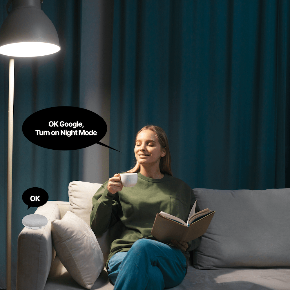 Toyama - Woman talking to smart home